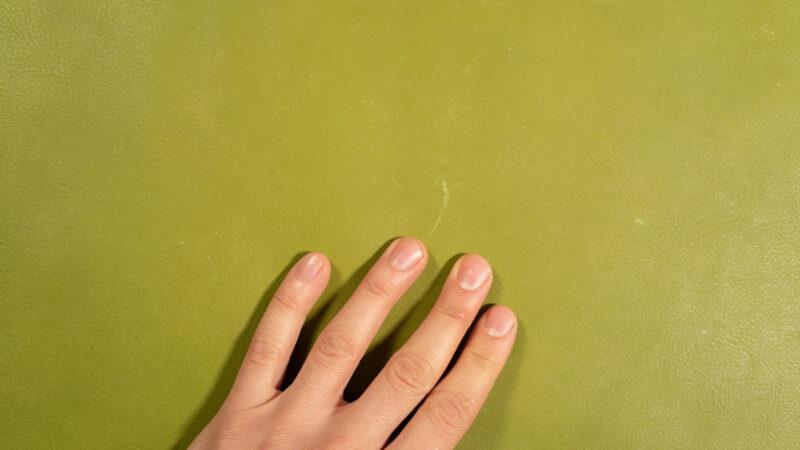 pistachio vachetta